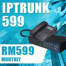 IPTelecom Multi Line IPTrunk 599